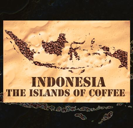 Indonesian coffee origin and story